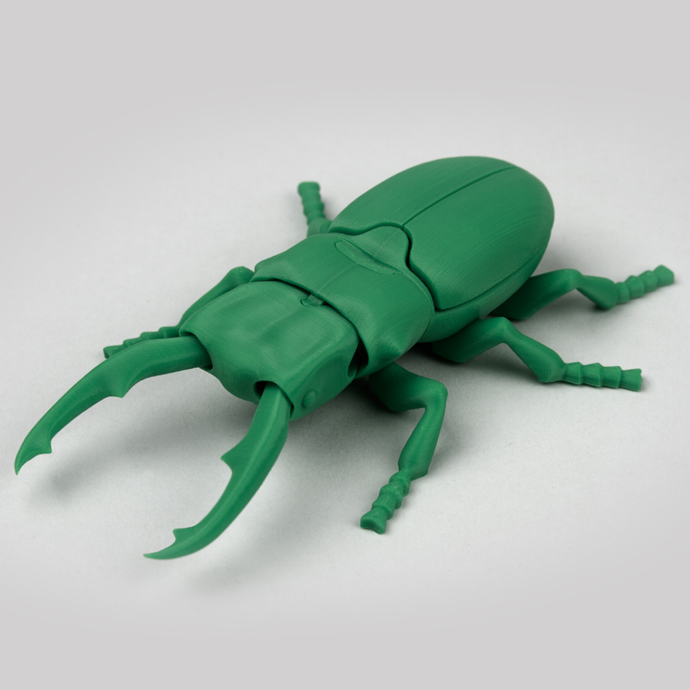 Foldable Stag Beetle